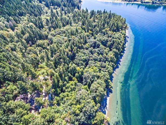 9808 Steffensen Road, Anderson Island, WA 98303 (#1637904) :: Northern Key Team