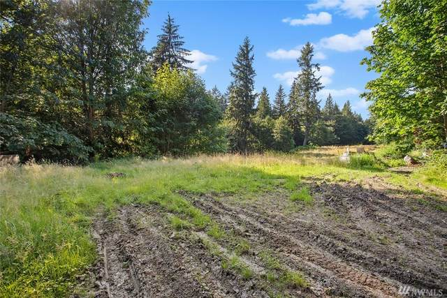 17805 214th Ave NE, Woodinville, WA 98077 (#1638717) :: NW Home Experts