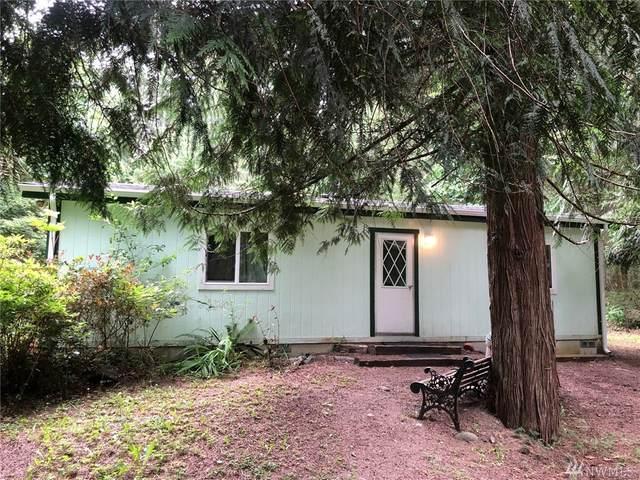 21 Appaloosa Place, Brinnon, WA 98320 (#1639198) :: Ben Kinney Real Estate Team