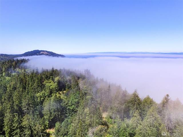 9999 Beach Bluff , Lot 3 Road, Port Angeles, WA 98363 (#1639689) :: Ben Kinney Real Estate Team