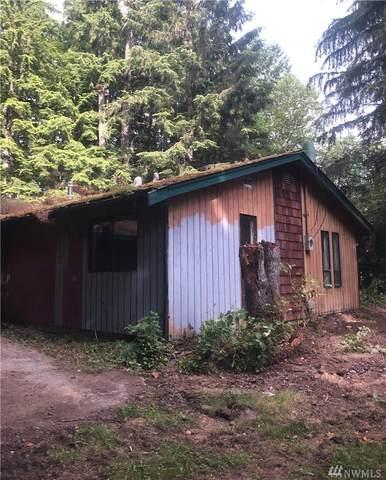 30107 Mountain Loop Hwy, Granite Falls, WA 98252 (#1640359) :: M4 Real Estate Group