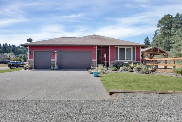 28518 80th Avenue Ct S, Roy, WA 98580 (#1640393) :: The Original Penny Team