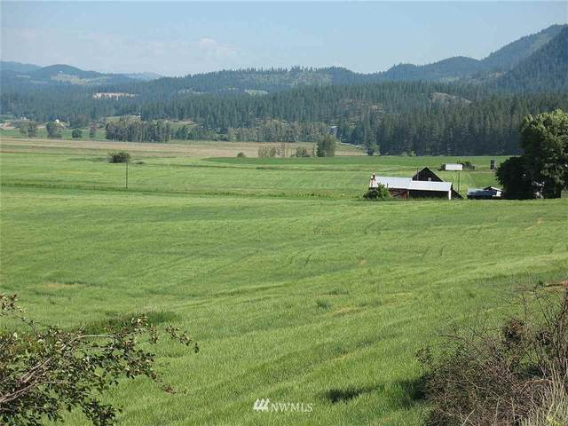 2714 Cottonwood Creek Road, Chewelah, WA 99109 (#1640472) :: TRI STAR Team | RE/MAX NW