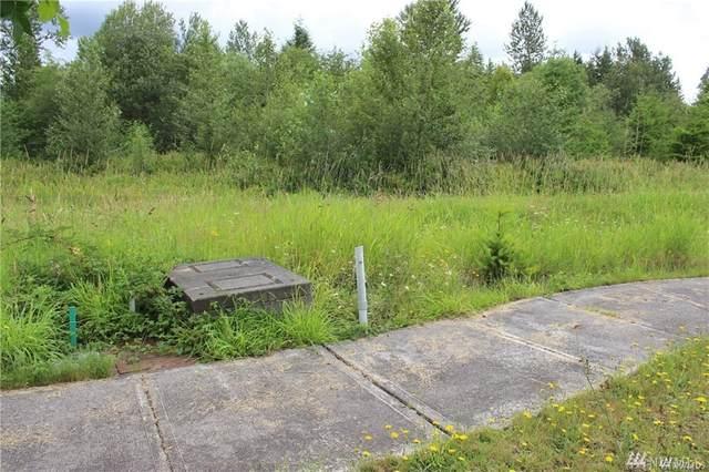 111 Hazelnut Lane, Onalaska, WA 98570 (#1640620) :: Better Properties Lacey