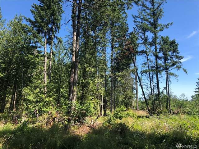 21800 70th Ave E, Graham, WA 98387 (#1640747) :: Better Homes and Gardens Real Estate McKenzie Group