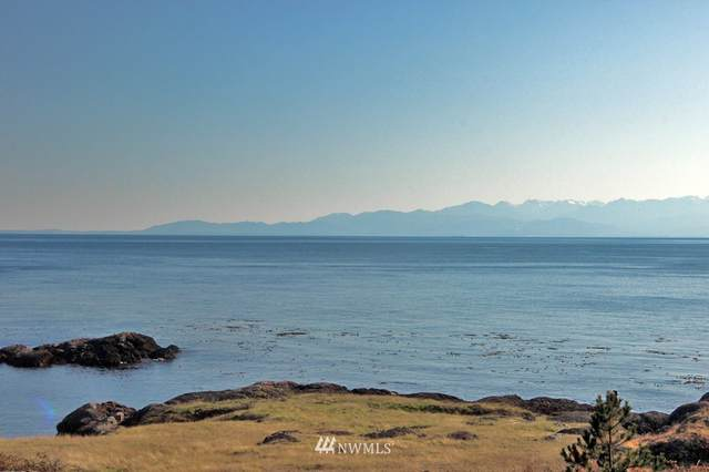 0 Half Moon Road, San Juan Island, WA 98250 (#1640933) :: NextHome South Sound