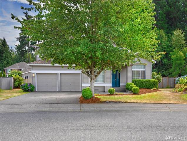 3626 258TH Ave SE, Sammamish, WA 98029 (#1641006) :: Lucas Pinto Real Estate Group