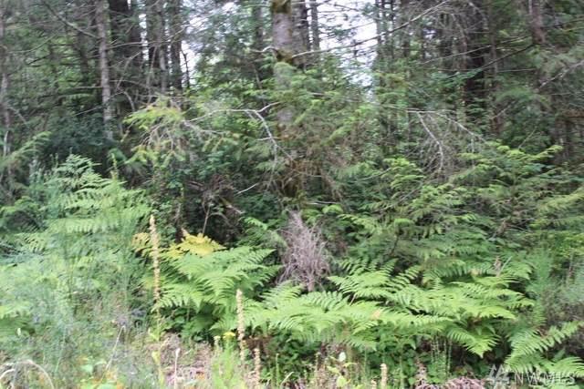 3 E Gerbing View Drive, Union, WA 98592 (#1641340) :: Urban Seattle Broker