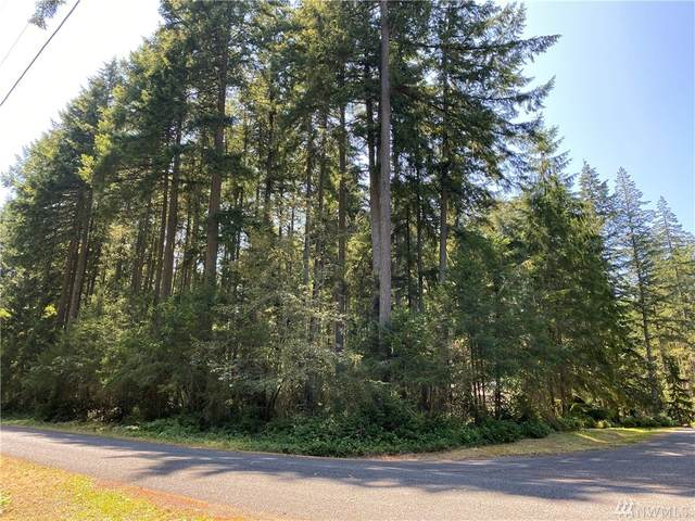 12824 98th St Ct, Anderson Island, WA 98303 (#1641536) :: Better Properties Lacey