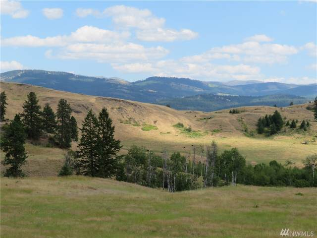 0-TBD Vulcan Mountain Rd, Curlew, WA 99118 (#1641622) :: Commencement Bay Brokers
