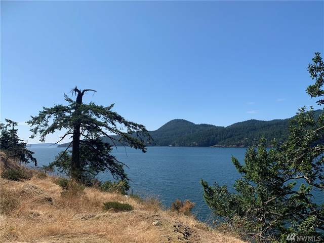 0 Cliffhouse Court, Orcas Island, WA 98245 (#1641980) :: Ben Kinney Real Estate Team