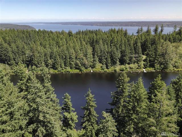 34 Silent Lake Rd, Quilcene, WA 98376 (#1642019) :: The Original Penny Team