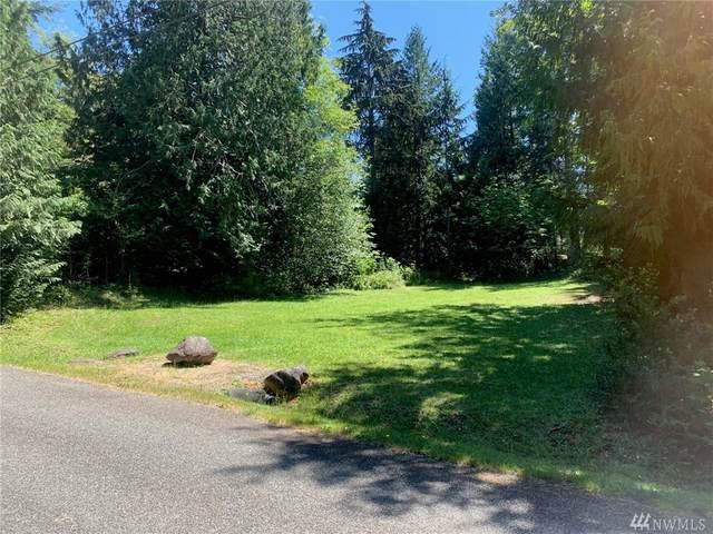 8 Whale Road, Brinnon, WA 98320 (#1642094) :: Hauer Home Team