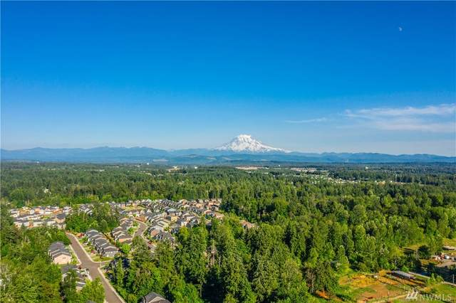 16215 74th Ave E, Puyallup, WA 98375 (#1642399) :: Priority One Realty Inc.