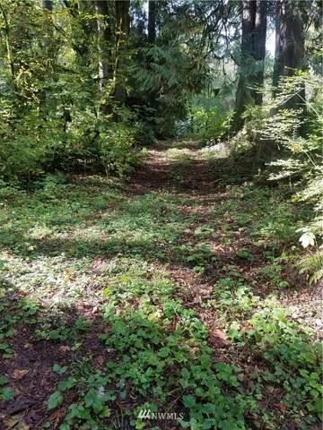 87 W Snoqualmie Valley Road NE, Carnation, WA 98014 (#1642446) :: NextHome South Sound