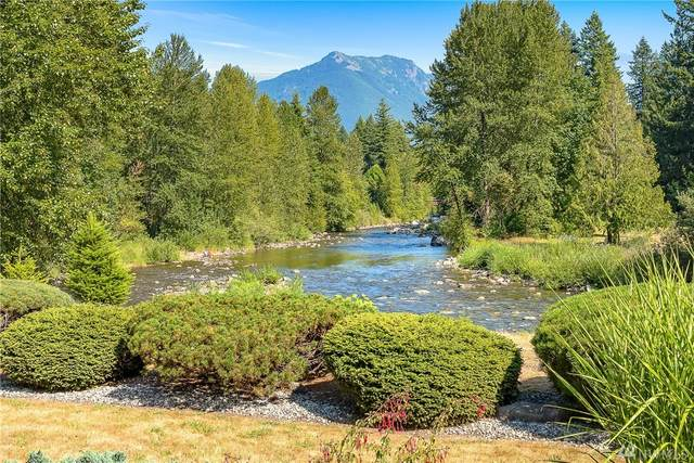 14220 442nd Ave SE, North Bend, WA 98045 (#1642666) :: Lucas Pinto Real Estate Group