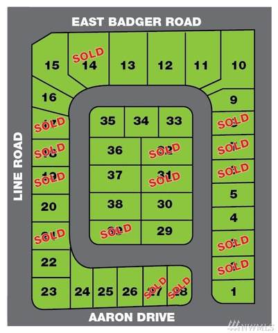 2229 Berryman Lp, Lynden, WA 98264 (#1642907) :: Lucas Pinto Real Estate Group