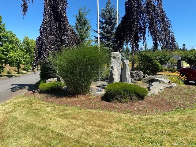 110 Redwood Lane, Onalaska, WA 98570 (#1642908) :: Better Properties Lacey