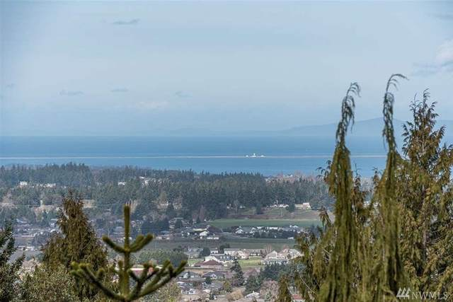 0 Owls Nest Road, Sequim, WA 98382 (#1642910) :: Ben Kinney Real Estate Team