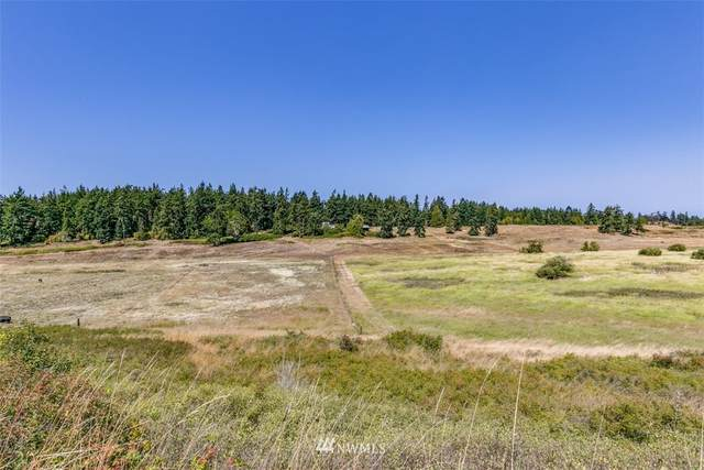9999 Lots 1-12 Lotzgesell-Hogback, Sequim, WA 98382 (#1642948) :: Priority One Realty Inc.