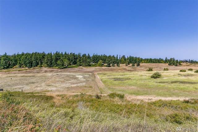 9999 Lots 1-12 Lotzgesell-Hogback, Sequim, WA 98382 (#1642948) :: Hauer Home Team