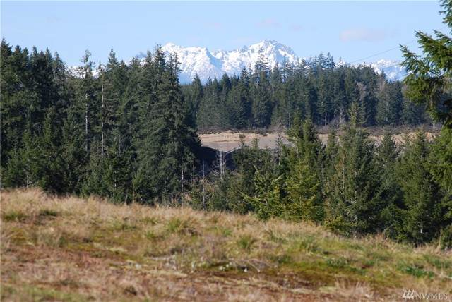 0-Lot 3 W Berry Ridge Rd, Shelton, WA 98584 (#1642961) :: The Kendra Todd Group at Keller Williams