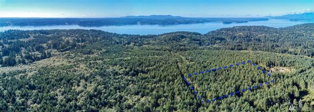 671 Hazel  Point Rd, Quilcene, WA 98736 (#1643564) :: Mike & Sandi Nelson Real Estate