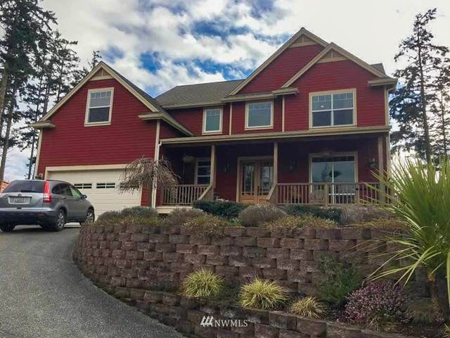 546 Kelsando Circle, Friday Harbor, WA 98250 (#1643581) :: Hauer Home Team