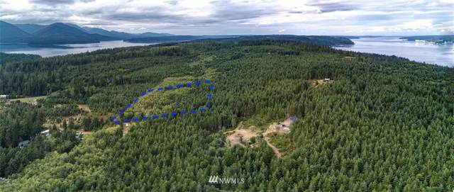 677 Hazel Point Road, Quilcene, WA 98376 (#1643600) :: Lucas Pinto Real Estate Group