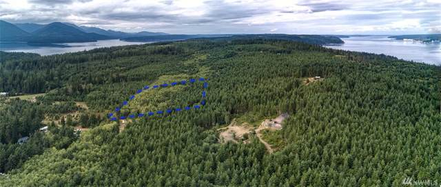 675 Hazel Point Rd, Quilcene, WA 98376 (#1643600) :: The Kendra Todd Group at Keller Williams