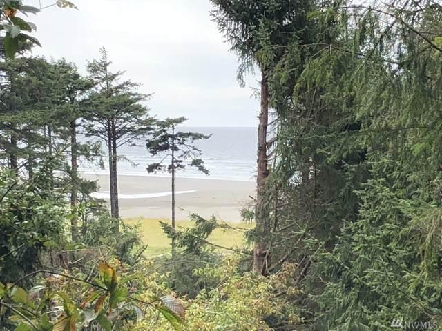 1 Koala Lane, Pacific Beach, WA 98571 (#1643769) :: Better Homes and Gardens Real Estate McKenzie Group
