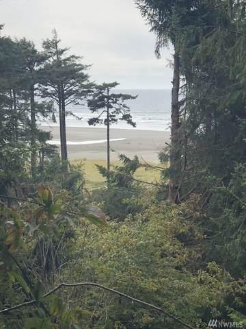 2 Koala Lane, Pacific Beach, WA 98571 (#1643891) :: Better Homes and Gardens Real Estate McKenzie Group