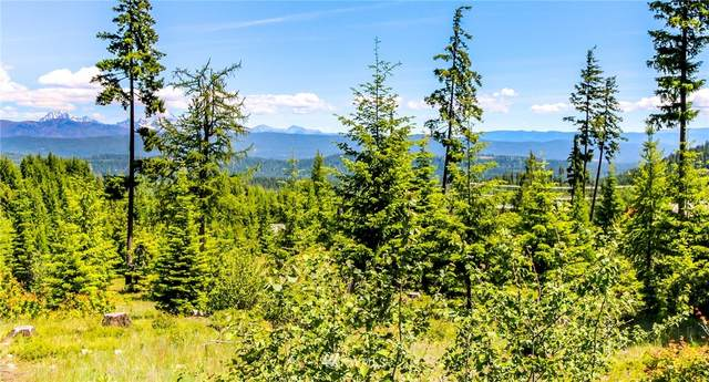 131 Highmark Drive, Cle Elum, WA 98922 (#1644126) :: Priority One Realty Inc.