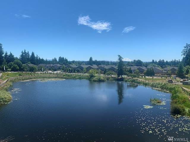 1621 Seattle Hill Rd Dd-1, Bothell, WA 98012 (#1644136) :: Lucas Pinto Real Estate Group