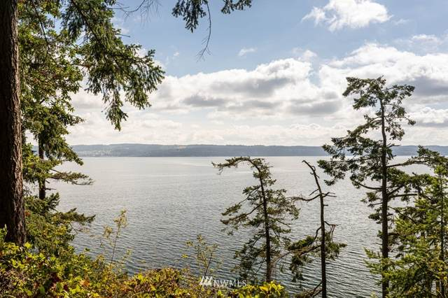 201 Harrington Road, Coupeville, WA 98239 (#1644250) :: Pacific Partners @ Greene Realty