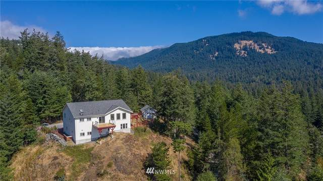299 Salish Way, Orcas Island, WA 98279 (#1644275) :: Ben Kinney Real Estate Team