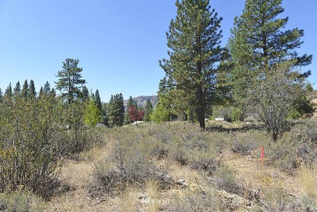 24 Pine Loop, Winthrop, WA 98862 (#1644288) :: Alchemy Real Estate