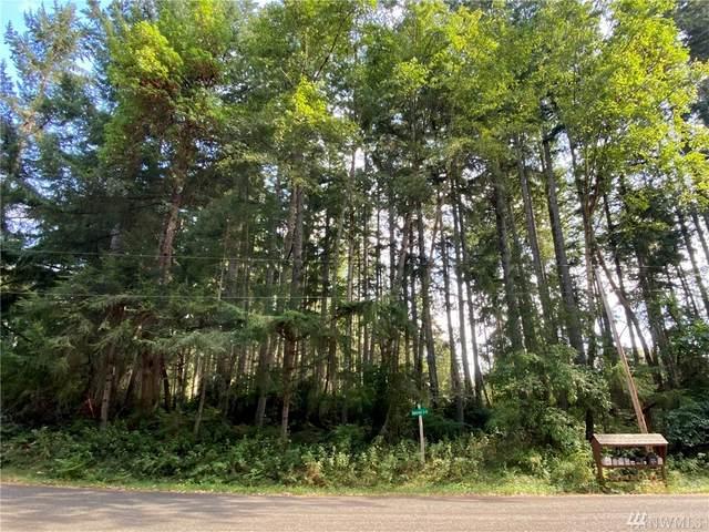 10816 Suncrest Drive, Anderson Island, WA 98303 (#1644349) :: Pickett Street Properties