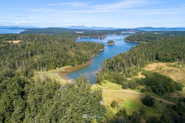 3727 W Valley Rd And Tpn#463621008, Friday Harbor, WA 98250 (#1644485) :: NextHome South Sound