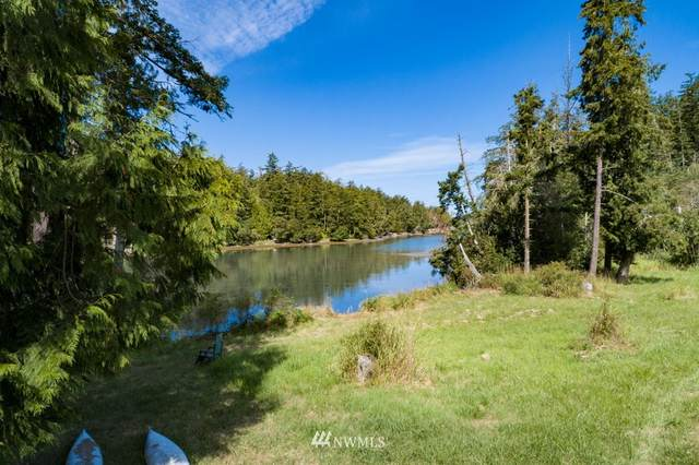 W Valley Rd And Tpn#463621008, Friday Harbor, WA 98250 (#1644485) :: The Kendra Todd Group at Keller Williams
