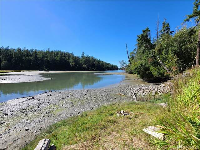 3727 W Valley Rd And Tpn#463621008, Friday Harbor, WA 98250 (#1644485) :: Northern Key Team