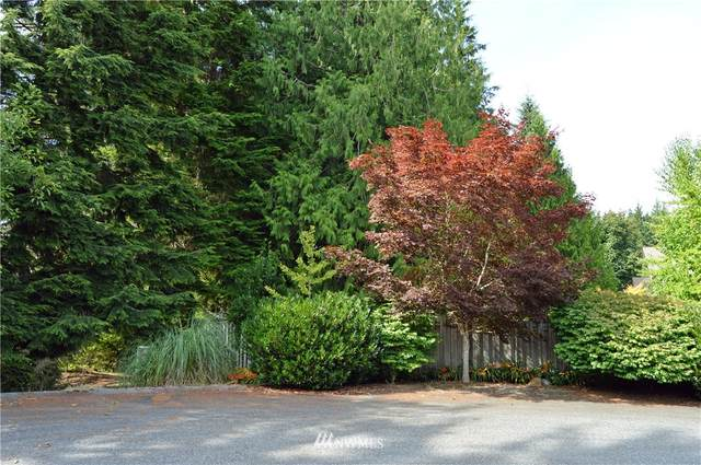 20029 118th Street SE, Snohomish, WA 98290 (#1644598) :: Pacific Partners @ Greene Realty