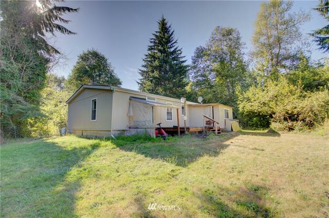 473 Cinebar Road, Cinebar, WA 98533 (#1644601) :: Hauer Home Team