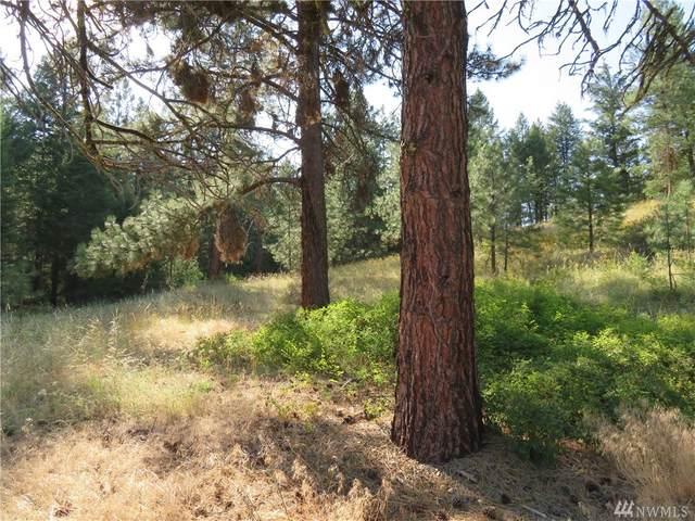 75 Coogan Creek Road, Wauconda, WA 98859 (MLS #1644610) :: Nick McLean Real Estate Group