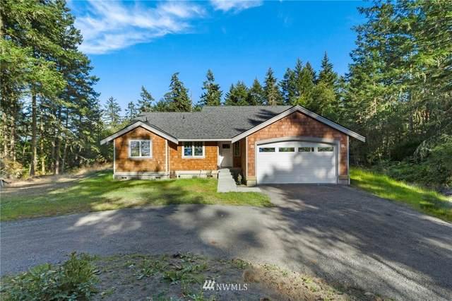 393 Mavericks Lane, San Juan Island, WA 98250 (#1644724) :: Ben Kinney Real Estate Team