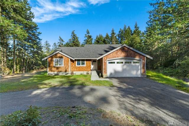 393 Mavericks Lane, San Juan Island, WA 98250 (#1644724) :: NextHome South Sound