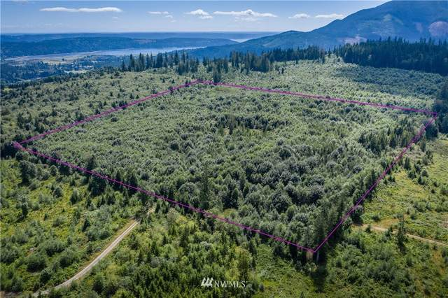 2700 Wildwood Road, Quilcene, WA 98376 (#1644851) :: Ben Kinney Real Estate Team