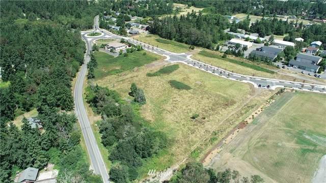 9999 7th Street, Port Townsend, WA 98368 (#1645244) :: Ben Kinney Real Estate Team