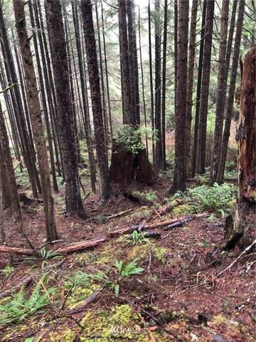 0 Woodland Plats, Pacific Beach, WA 98571 (#1645306) :: Capstone Ventures Inc