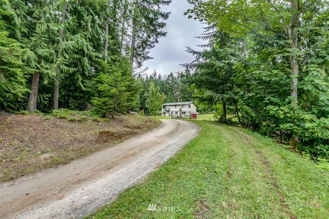 246 Mountain Springs Lane, Port Angeles, WA 98362 (#1645461) :: Lucas Pinto Real Estate Group